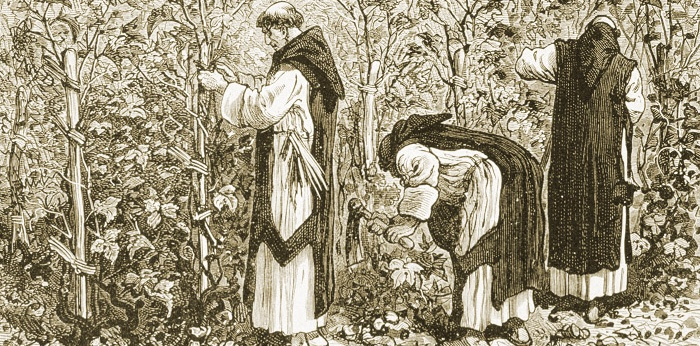 Franciscan friars tending to grapevines. Source: