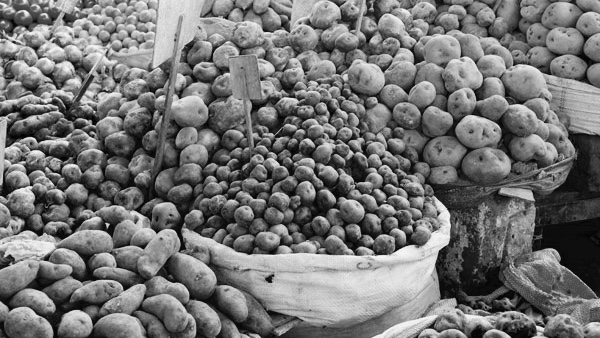 Potatoes at a market in Lima.